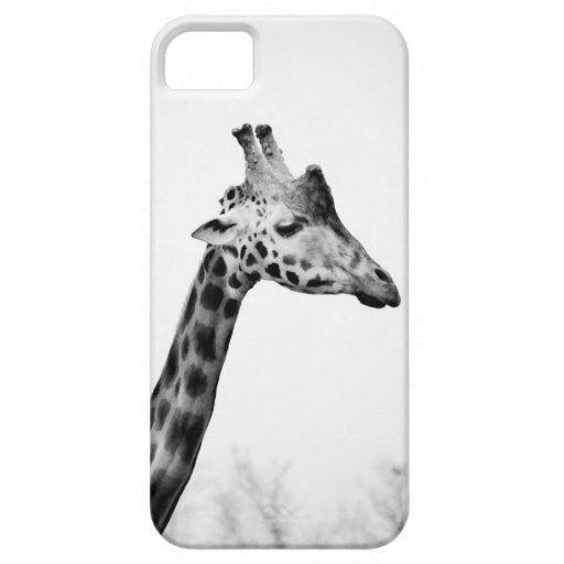 夫人|キリン iPhone 5 COVER