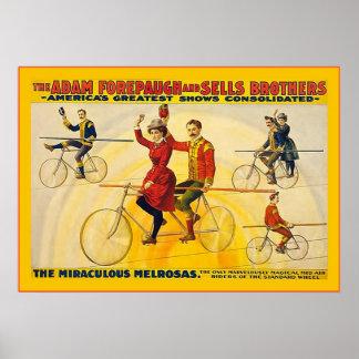 奇跡的なMelrosasの~の1900年の~のヴィンテージのサーカス ポスター