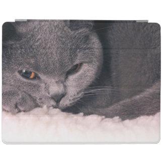 女性のための眠い猫のiPad 2/3/4/カバー iPadスマートカバー