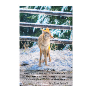 女性のコヨーテおよび雪の野性生物の写真の芸術および詩 キャンバスプリント