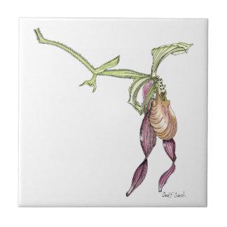 女性のスリッパ蘭のタイル タイル