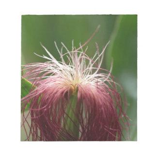 女性のトウモロコシの花のマクロ写真 ノートパッド