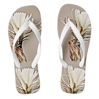 女性のビーチサンダルの白いサボテンの開花 ビーチサンダル