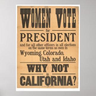 女性の投票舷側(1873A) ポスター