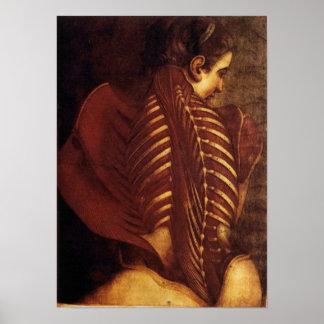 女性背部ポスターの解剖学か骨格 ポスター