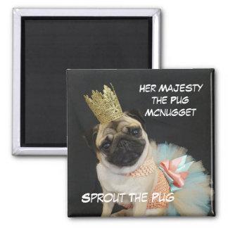 女王の磁石 マグネット