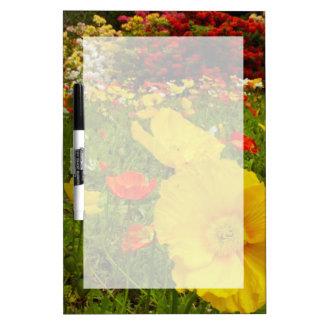 女王公園の植物園 ホワイトボード