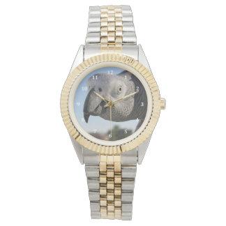 好奇心が強いコンゴのアフリカ灰色のオウム 腕時計