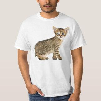 好奇心が強い子ネコ Tシャツ