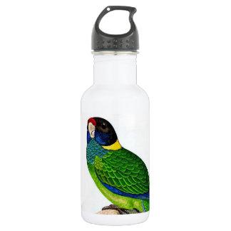 好奇心が強い鳥の青緑の黄色のオウム ウォーターボトル