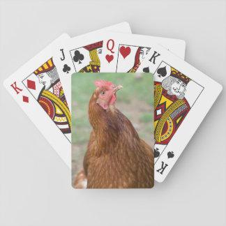 好奇心が強い鶏のポートレート トランプ