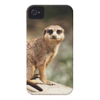 好奇心が強い Case-Mate iPhone 4 ケース