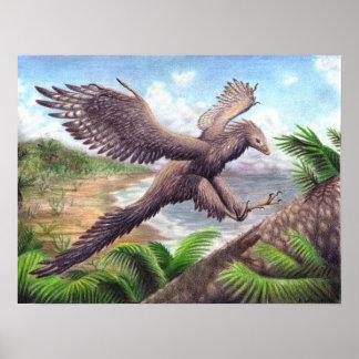 始祖鳥のプリント ポスター