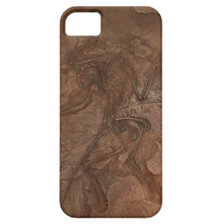 始祖鳥の化石-穹窖 iPhone SE/5/5s ケース
