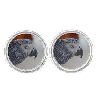 威厳のあるなアフリカ灰色のオウム カフスリンク