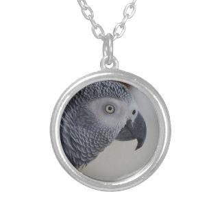 威厳のあるなアフリカ灰色のオウム シルバープレートネックレス