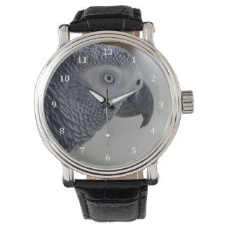 威厳のあるなアフリカ灰色のオウム 腕時計