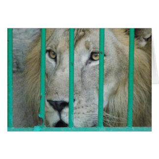 威厳のあるなライオン カード