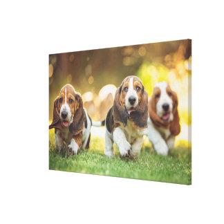 嬉しく走っている3匹のバセットハウンドの子犬 キャンバスプリント