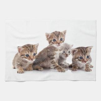 子ネコおよびより多くの子ネコ 台所タオル