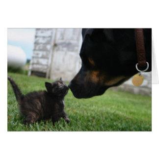 子ネコおよび犬の勇気付けられるの挨拶状 カード