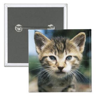 子ネコのアウトドア 5.1CM 正方形バッジ