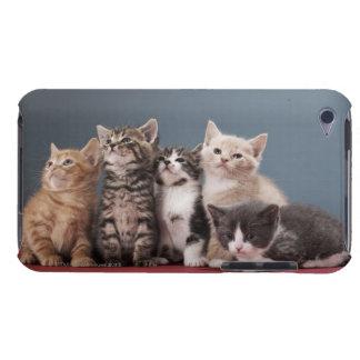 子ネコのグループのポートレート Case-Mate iPod TOUCH ケース