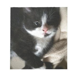 子ネコのデカール ノートパッド