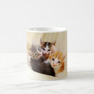 子ネコのトリオのマグ コーヒーマグカップ