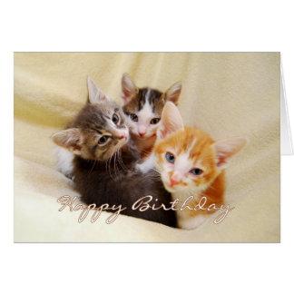 子ネコのハッピーバースデーのトリオ カード