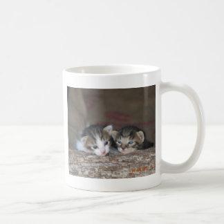 子ネコの兄弟姉妹 コーヒーマグカップ