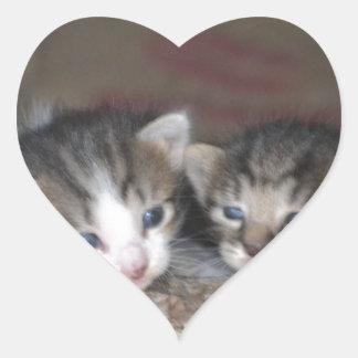 子ネコの兄弟姉妹 ハートシール