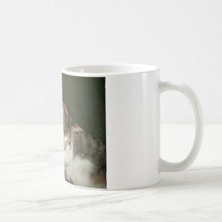 子ネコの抱擁 コーヒーマグカップ