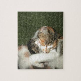 子ネコの抱擁 ジグソーパズル