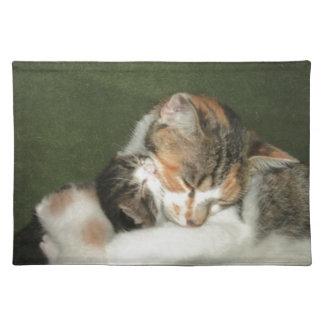 子ネコの抱擁 ランチョンマット