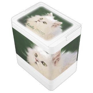 子ネコの魅了 IGLOO クーラーボックス