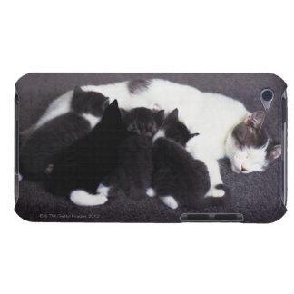 子ネコを食べ物を与えている猫 Case-Mate iPod TOUCH ケース