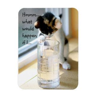子ネコ対水ガラス マグネット
