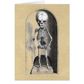 子供の骨組前部/背部 カード