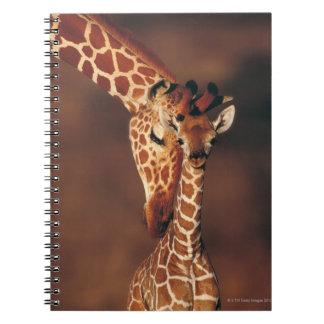 子牛(Giraffaのcamelopardalis)を持つ大人のキリン ノートブック