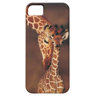 子牛(Giraffaのcamelopardalis)を持つ大人のキリン iPhone SE/5/5s ケース