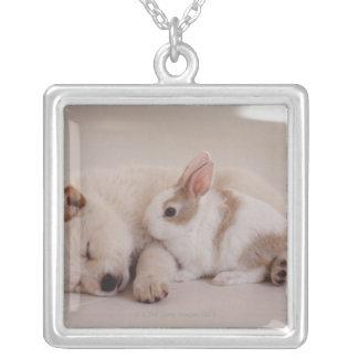 子犬およびウサギ シルバープレートネックレス