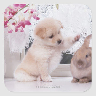 子犬およびLOPの耳のウサギ スクエアシール