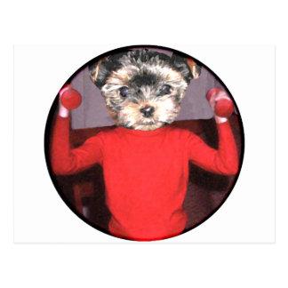 子犬のトレーニング ポストカード