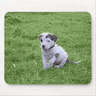 子犬のピット・ブルのT骨 マウスパッド
