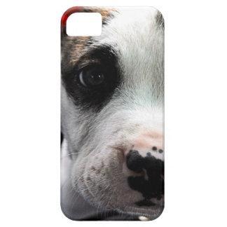 子犬のピット・ブルのT骨 iPhone SE/5/5s ケース