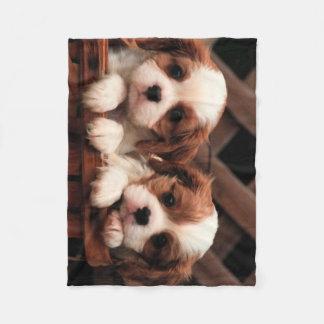 子犬の写真1 フリースブランケット