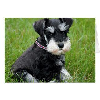子犬の態度 カード