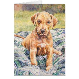 子犬の挨拶状 カード