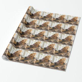 子犬の紙 ラッピングペーパー